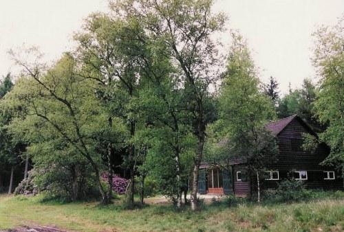 Boshut